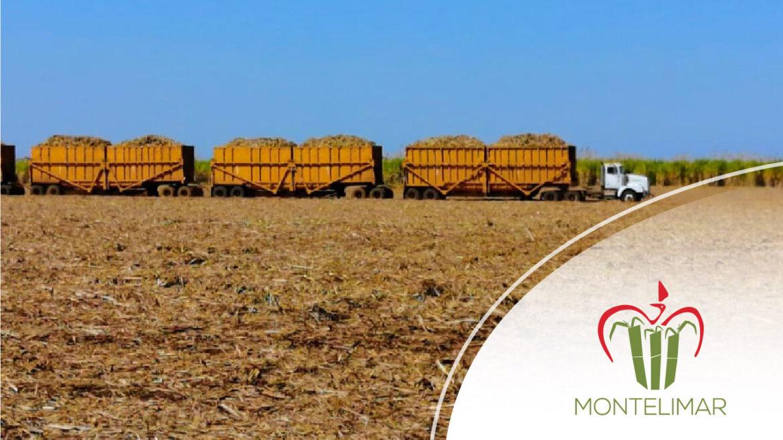 Ingenio Montelimar finalizó Zafra 2019/2020